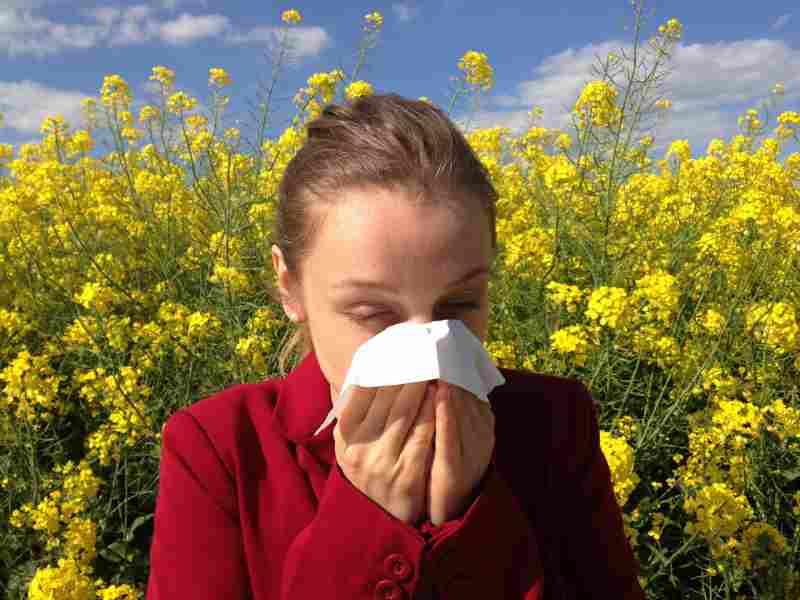そもそも花粉症の原因とは?緩和するための対策をご紹介!