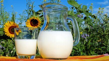 アラキドン酸配合の粉ミルクおすすめ3選!赤ちゃんの成長に良い?
