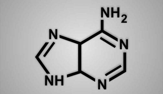 核酸サプリメントのおすすめ3選!効果、口コミは?