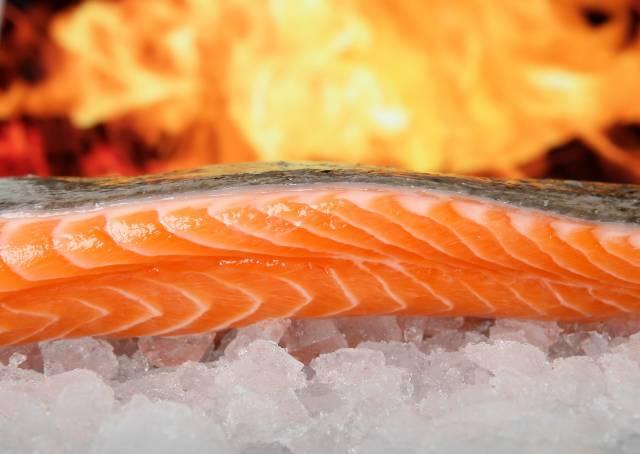 魚油にはどんな成分が含まれている?その効果とは?