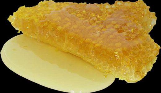 蜂の子サプリメントのおすすめ3選!効果、副作用、飲むタイミングを解説!