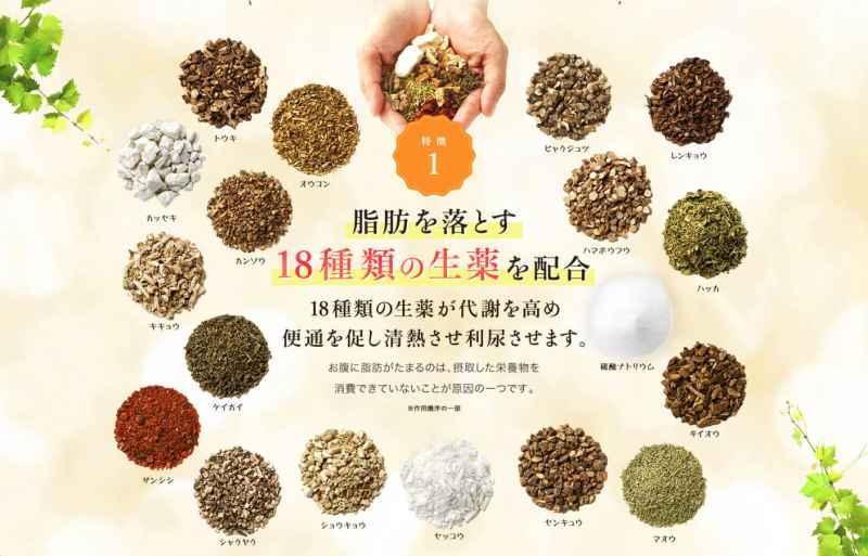 生漢煎(防風通聖散)は医薬品だからダイエットサプリメントとは違う?