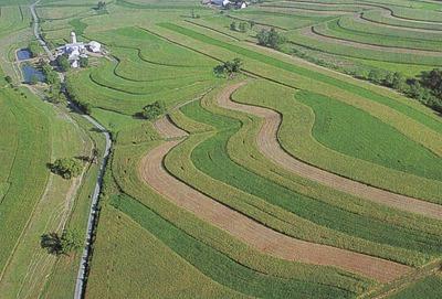 アメリカ農地